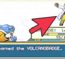 Hoe Moltres te vangen in Fire Red Pokemon